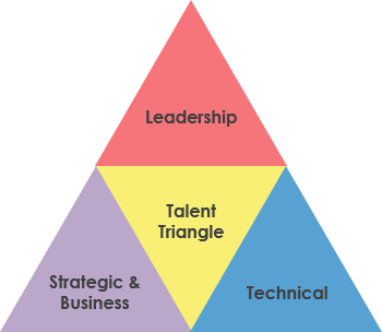 PMBOK talent triangle